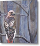 Can't See The Forest For The Trees Metal Print by Bill Werle