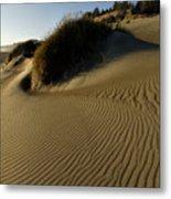 Cape Blanco Sands Metal Print
