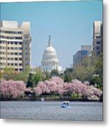 Capitol Blossoms Metal Print