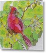 Cardinal In Palo Verde Metal Print