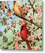 Cardinals In Apple Blossoms Metal Print