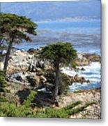 Carmel Seaside With Cypresses Metal Print