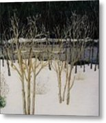 Cary Winter-sold Metal Print