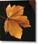 Cascade Orange Metal Print