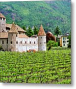 Castle And Vineyard In Italy Metal Print