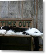 Cat Time Out Metal Print