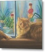 Cats In The Window Metal Print