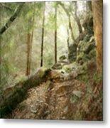 Cavern Walk ..... Metal Print