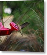 Check Out My Wings Metal Print