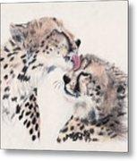 Cheetah Love Metal Print