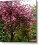 Cherry Spring Blossom Metal Print by Valia Bradshaw