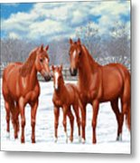 Chestnut Horses In Winter Pasture Metal Print by Crista Forest