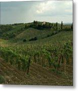 Chianti Vineyards In Tuscany Metal Print
