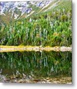 Chimney Pond Reflections 2 Metal Print