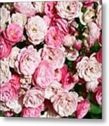 Cluster Of Roses  Metal Print