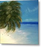 Coconuts And Palm Trees Metal Print
