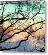 Cold Hearted Bliss Metal Print