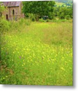 Collection Of Wildflowers Metal Print