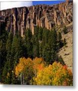 Colorado Fall 4 Metal Print
