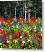Colorado Rockies Wildflowers Metal Print
