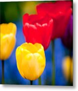 Colorful L569 Metal Print
