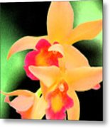 Colorful Orchid Metal Print