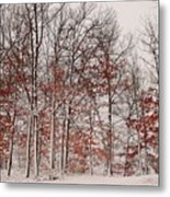 Colorful Winters Day Metal Print