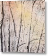 Colors Of Winter Metal Print