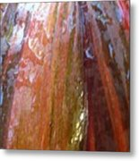 Colourful Cordyline Leaf Metal Print
