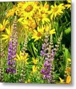 Columbia Gorge Wildflowers Metal Print