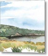 Colyer Lake Metal Print