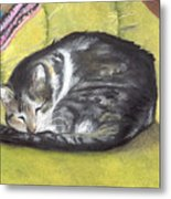 Comfortable Cat Metal Print