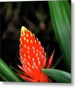 Cone Of Color Metal Print