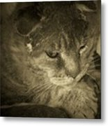 Contemplation Of Thumbody In Sepia Tone Metal Print