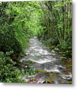 Cool Green Stream Metal Print