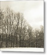 Cool Winter Metal Print