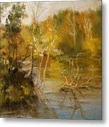 Coosa River In The Fall Metal Print