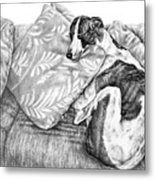 Couch Potato Greyhound Dog Print Metal Print by Kelli Swan