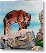 Cougars Metal Print