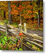 Country Road In Autumn Forest Metal Print