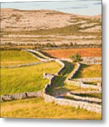 Countryside Road Metal Print