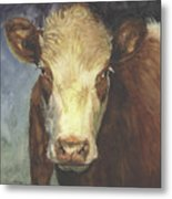 Cow Portrait II Metal Print
