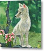 Coyote Pup Metal Print by Terry Lewey