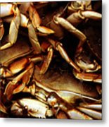 Crabs Awaiting Their Fate Metal Print
