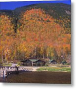 Crawford Notch Willey House Metal Print