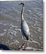 Creatures Of The Gulf - Advancing Slowly Metal Print