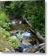 Creek On Mt. Spokane 1 Metal Print