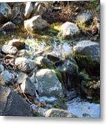 Creek Reflections 1 Metal Print