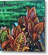 Crotons 4 Metal Print