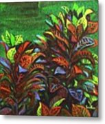 Crotons 6 Metal Print